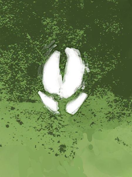 Boarlords Logo