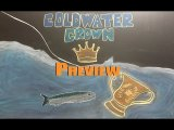 Chalkboard Game Preview - Coldwater Crown